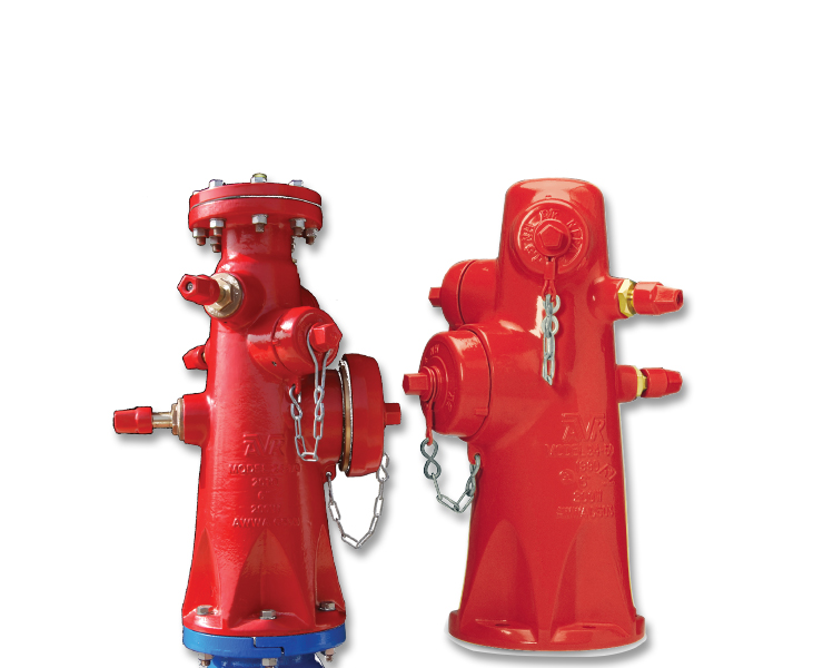 Wet barrel hydrants for fire protection